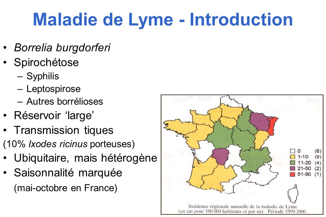 Maladie de Lyme - Introduction