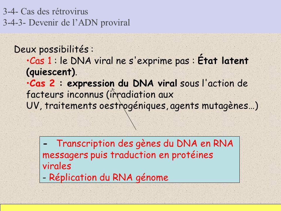 3-4- Cas des rétrovirus 3-4-3- Devenir de l'ADN proviral