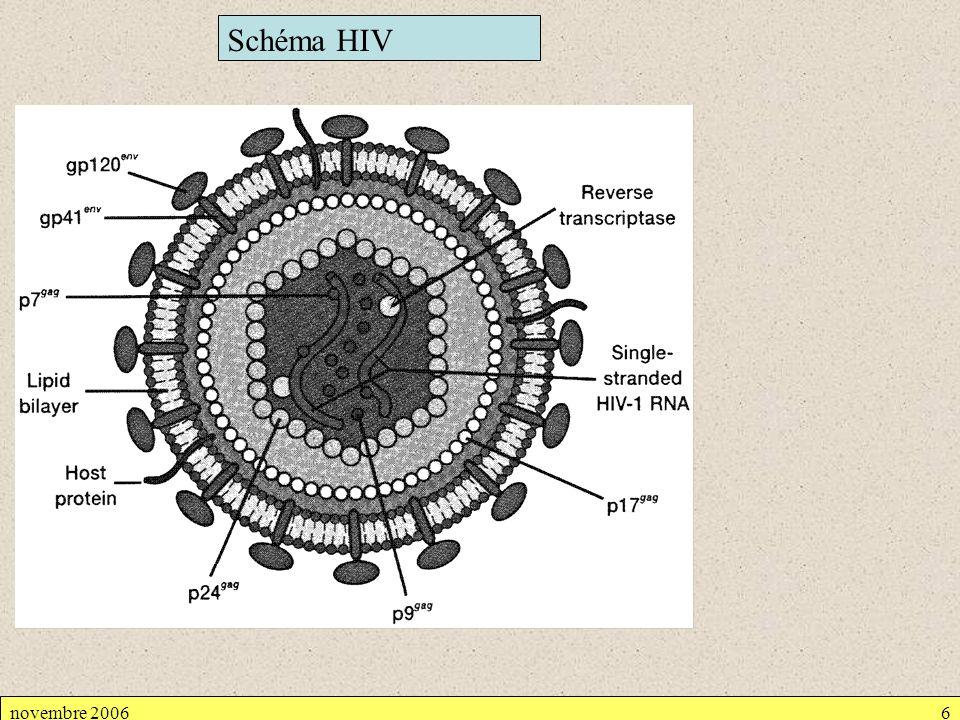 Schéma HIV novembre 2006