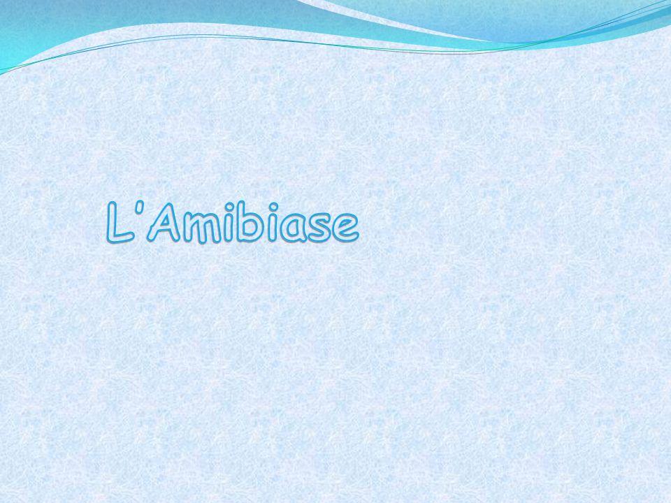 L'Amibiase