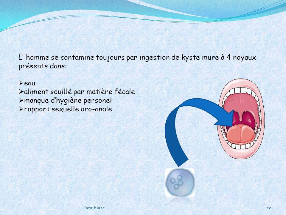 aliment souillé par matière fécale manque d'hygiène personel