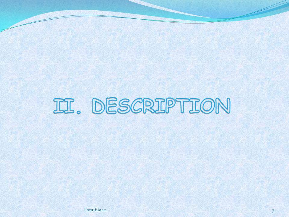 II. DESCRIPTION l amibiase...