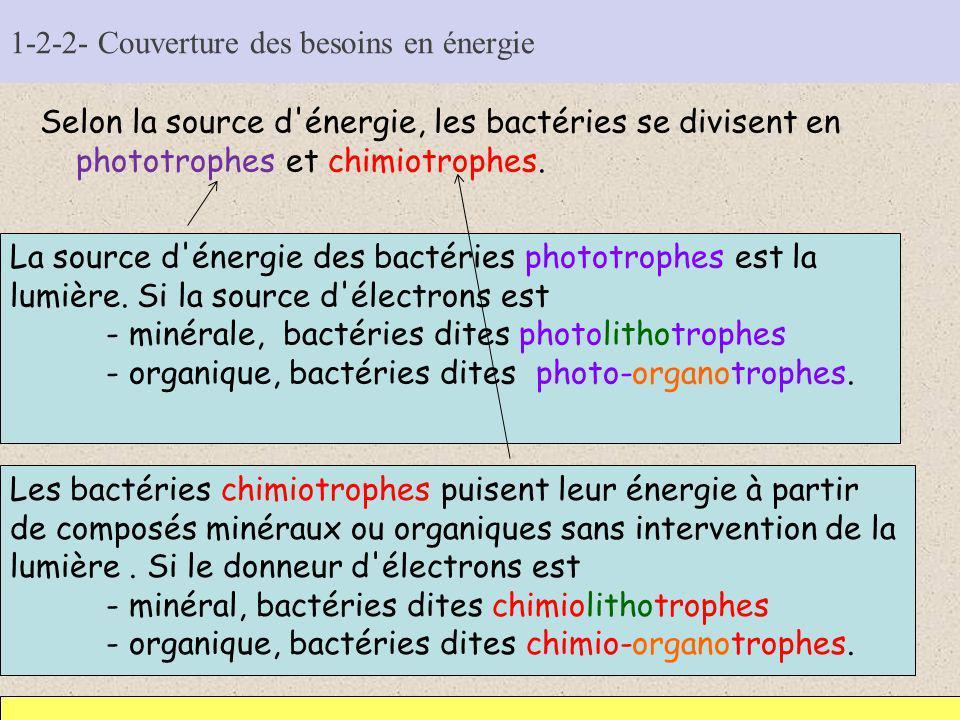 1-2-2- Couverture des besoins en énergie