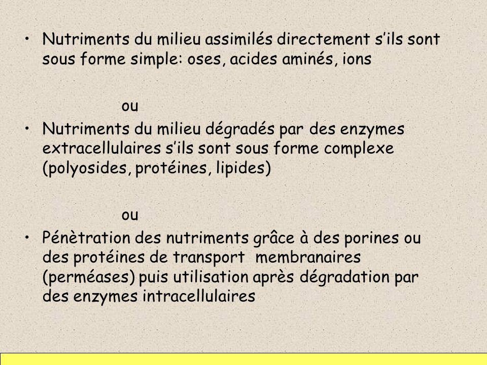 Nutriments du milieu assimilés directement s'ils sont sous forme simple: oses, acides aminés, ions
