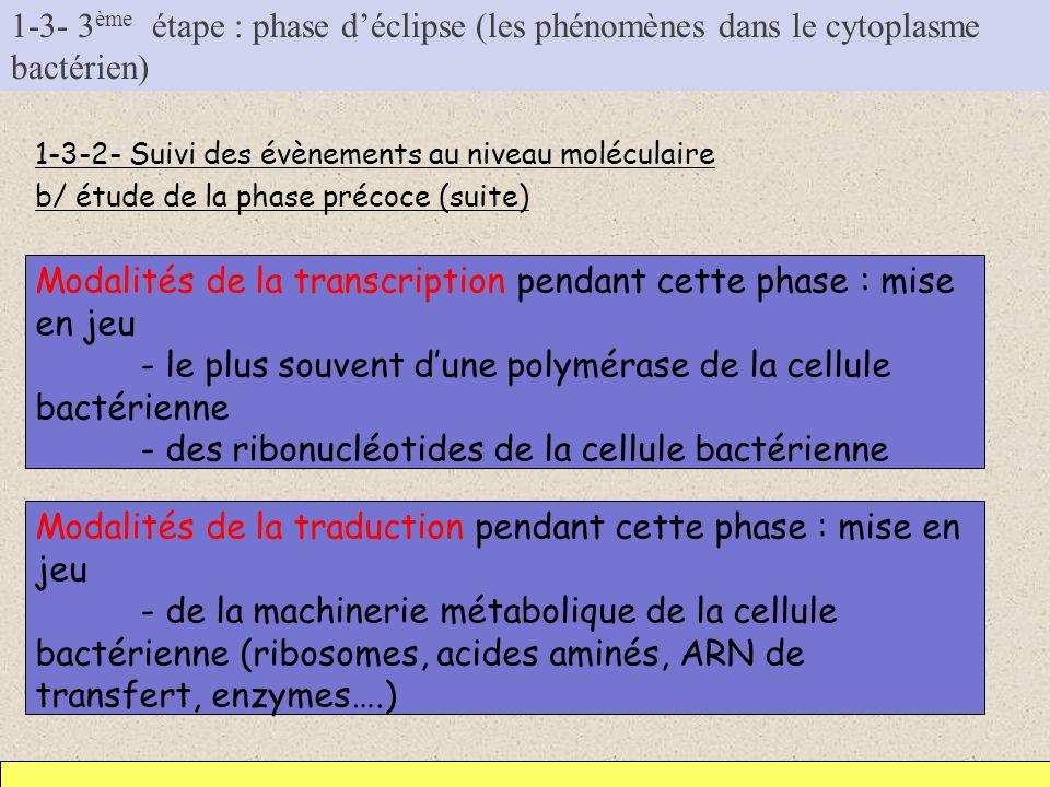 Modalités de la transcription pendant cette phase : mise en jeu