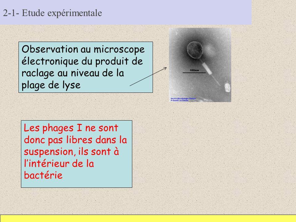 2-1- Etude expérimentale