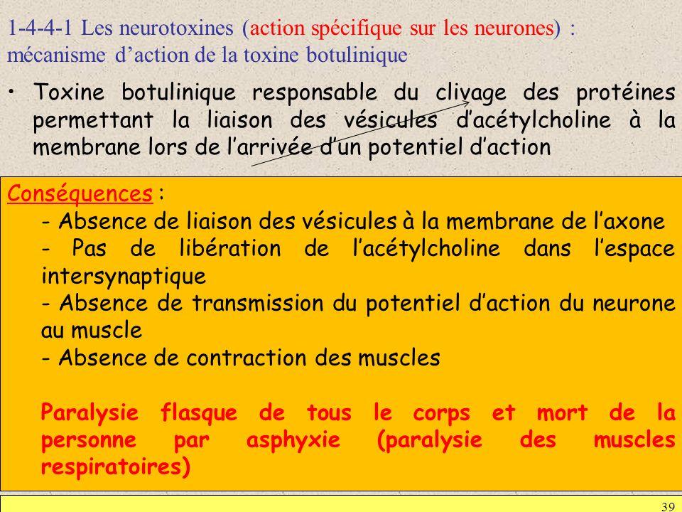 1-4-4-1 Les neurotoxines (action spécifique sur les neurones) : mécanisme d'action de la toxine botulinique