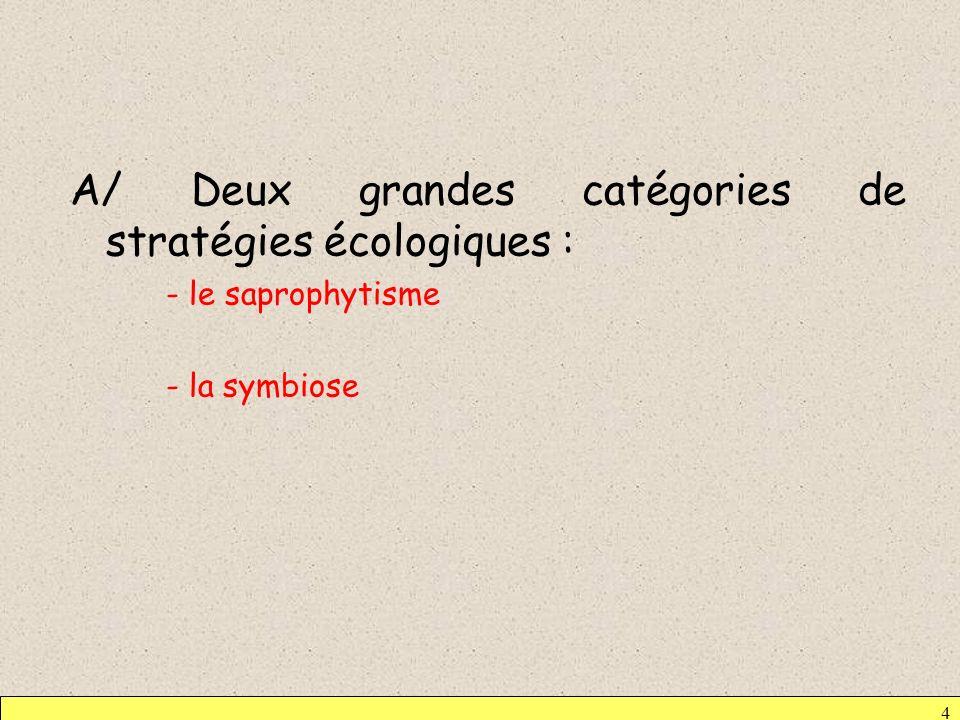 A/ Deux grandes catégories de stratégies écologiques :