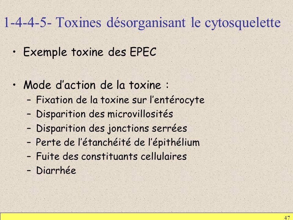 1-4-4-5- Toxines désorganisant le cytosquelette