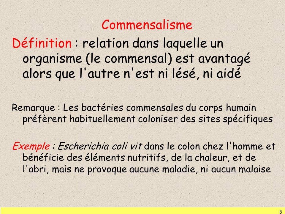 CommensalismeDéfinition : relation dans laquelle un organisme (le commensal) est avantagé alors que l autre n est ni lésé, ni aidé.