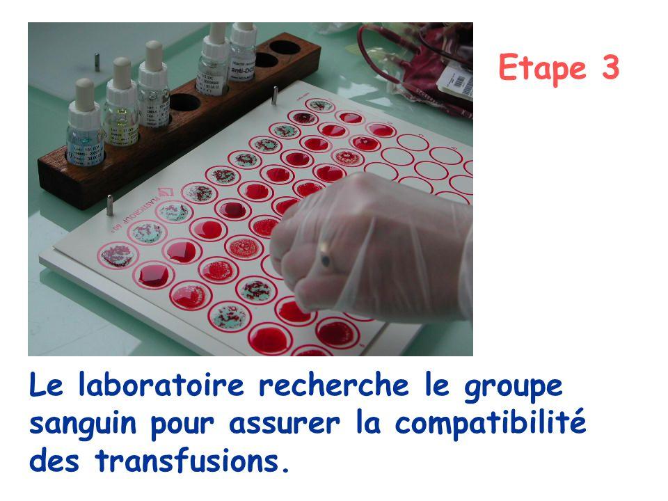 Etape 3 Le laboratoire recherche le groupe sanguin pour assurer la compatibilité des transfusions.