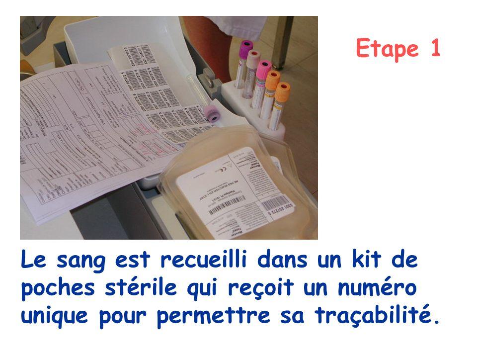 Etape 1 Le sang est recueilli dans un kit de poches stérile qui reçoit un numéro unique pour permettre sa traçabilité.