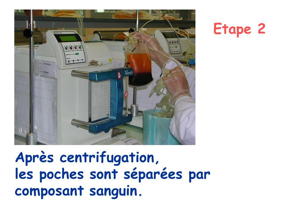 Etape 2 Après centrifugation, les poches sont séparées par composant sanguin.