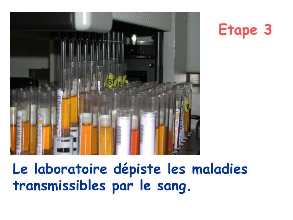 Etape 3 Le laboratoire dépiste les maladies transmissibles par le sang.