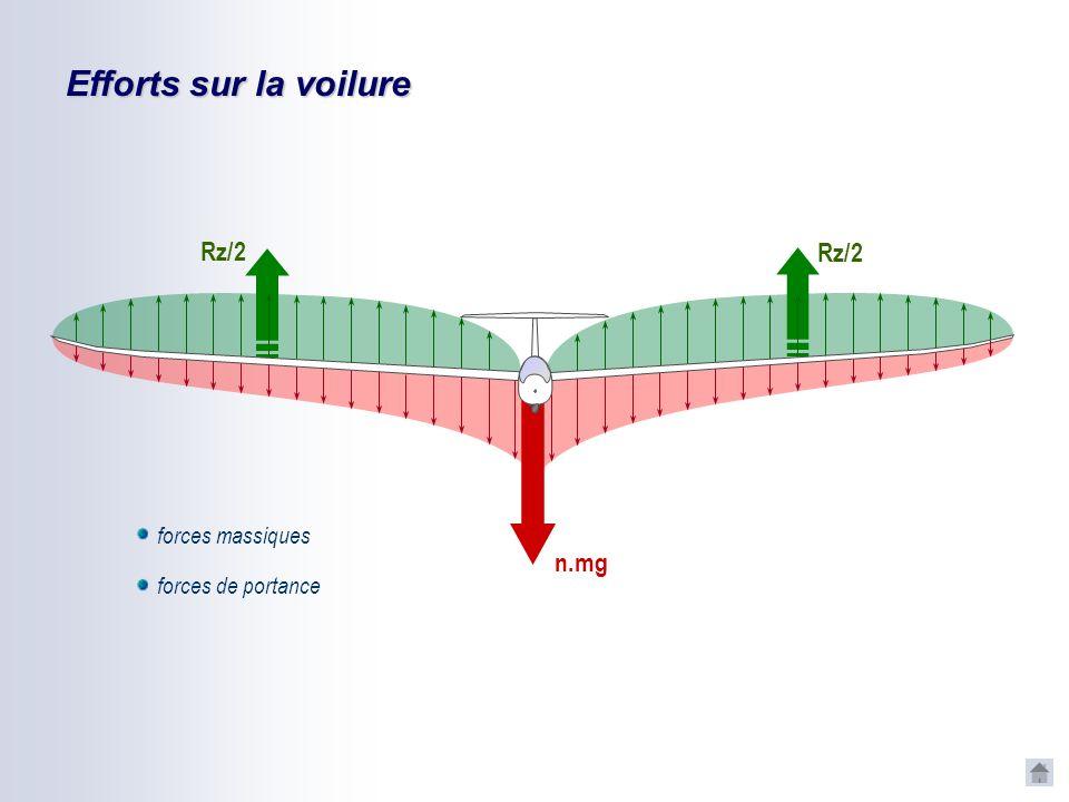 Efforts sur la voilure Rz/2 Rz/2 forces massiques n.mg