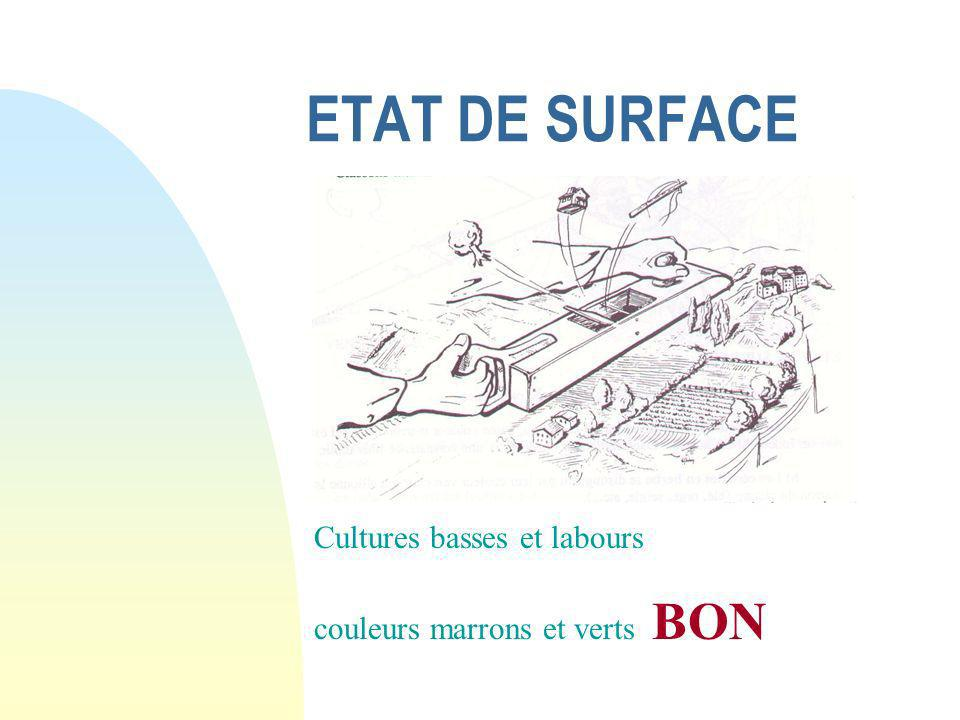 ETAT DE SURFACE Cultures basses et labours