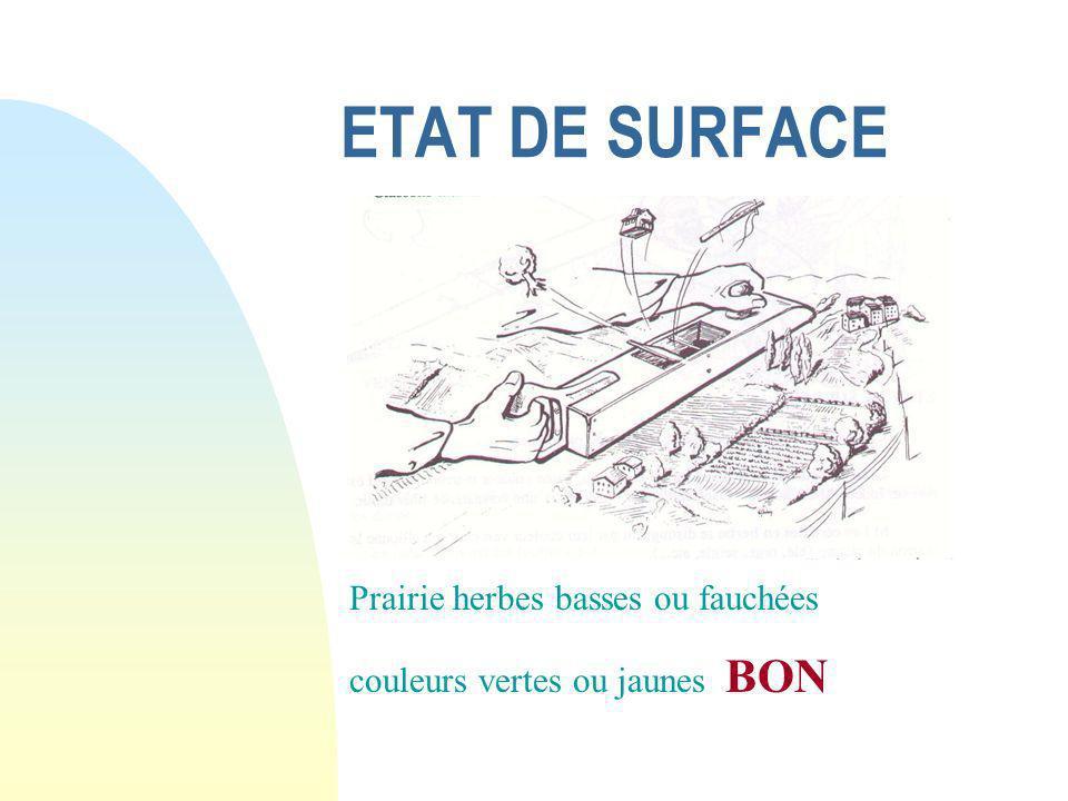 ETAT DE SURFACE Prairie herbes basses ou fauchées