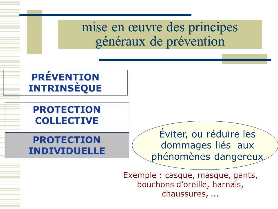 mise en œuvre des principes généraux de prévention