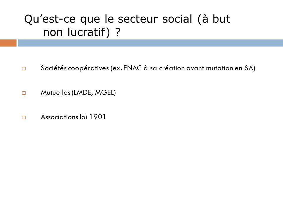 Qu'est-ce que le secteur social (à but non lucratif)