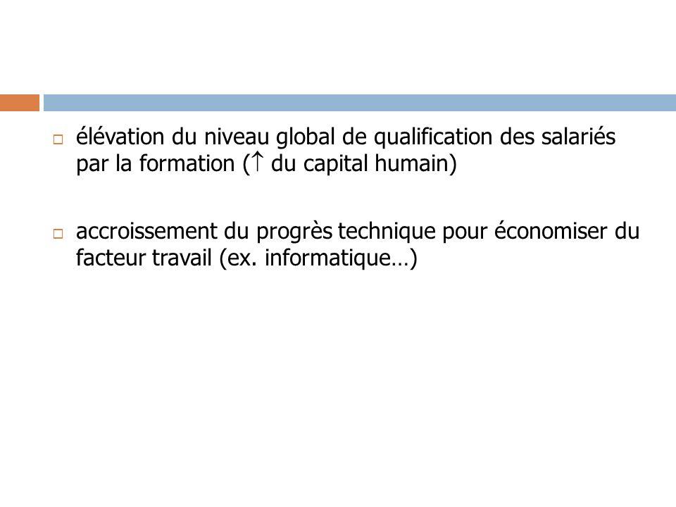 élévation du niveau global de qualification des salariés par la formation ( du capital humain)