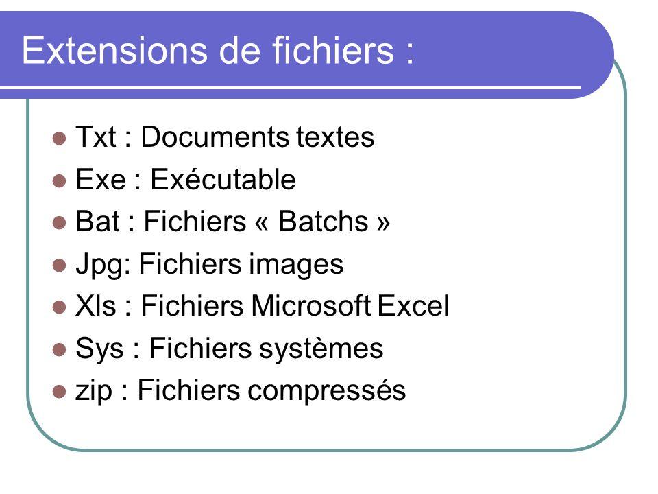 Extensions de fichiers :