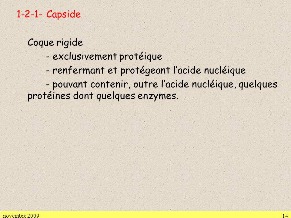 1-2-1- Capside Coque rigide - exclusivement protéique - renfermant et protégeant l'acide nucléique - pouvant contenir, outre l'acide nucléique, quelques protéines dont quelques enzymes.