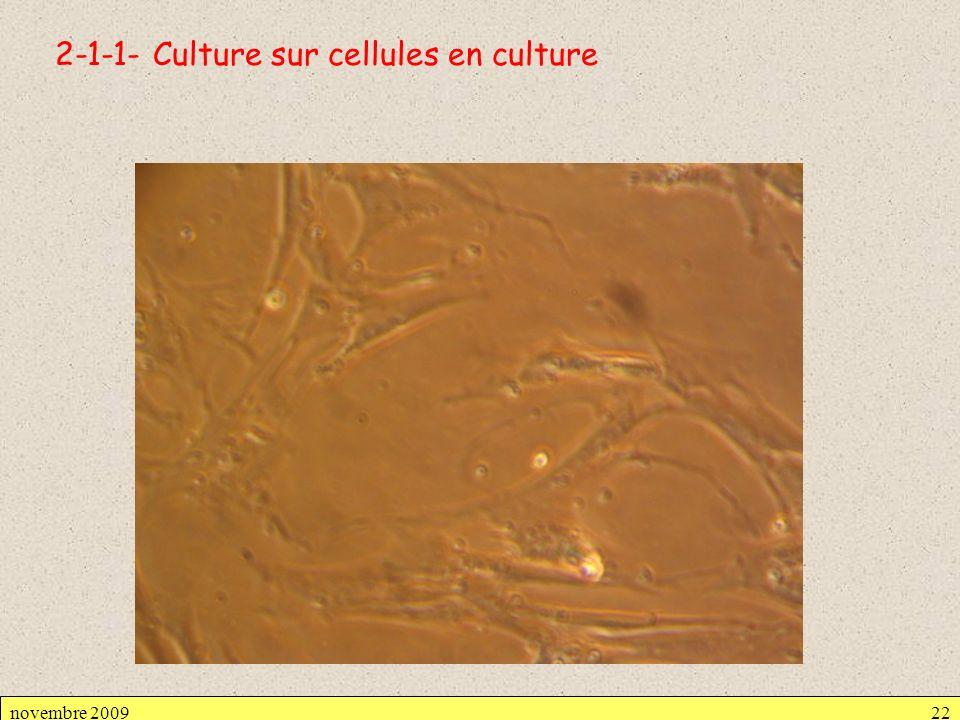 2-1-1- Culture sur cellules en culture