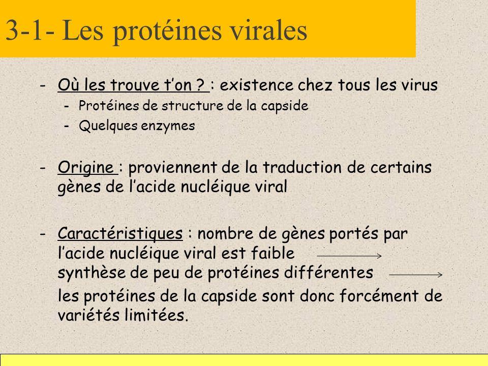 3-1- Les protéines virales