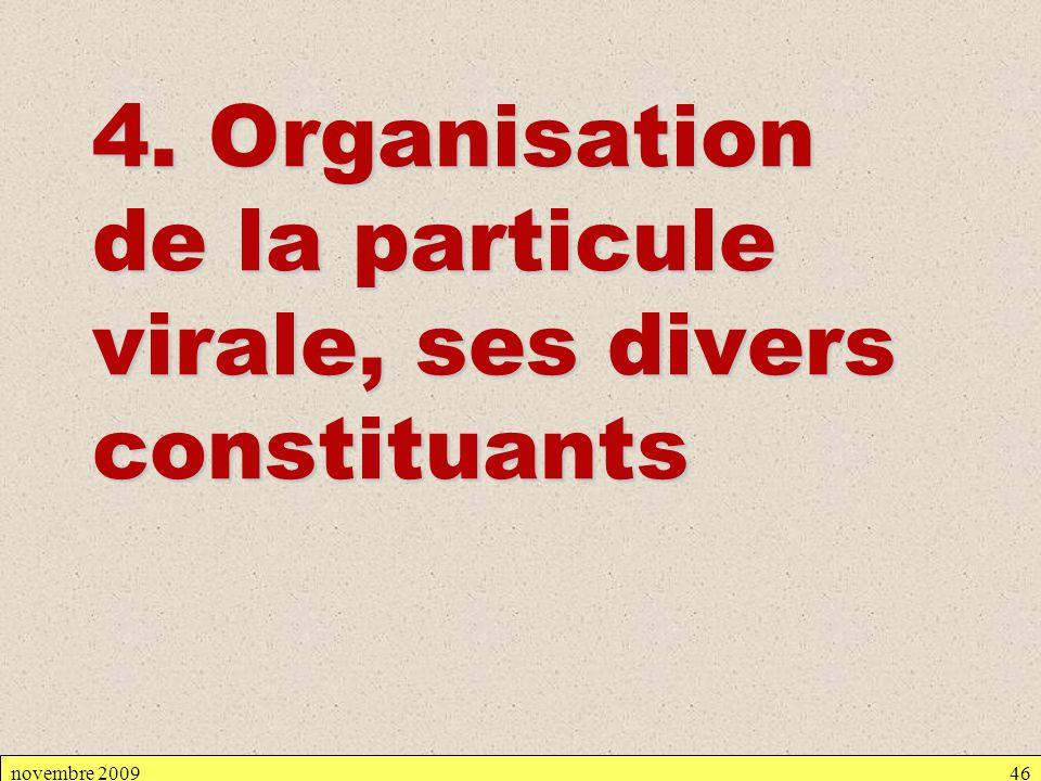 4. Organisation de la particule virale, ses divers constituants