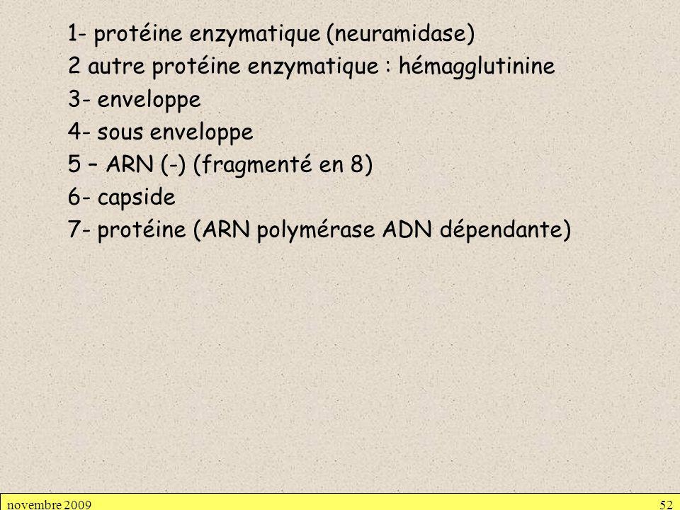 1- protéine enzymatique (neuramidase) 2 autre protéine enzymatique : hémagglutinine 3- enveloppe 4- sous enveloppe 5 – ARN (-) (fragmenté en 8) 6- capside 7- protéine (ARN polymérase ADN dépendante)