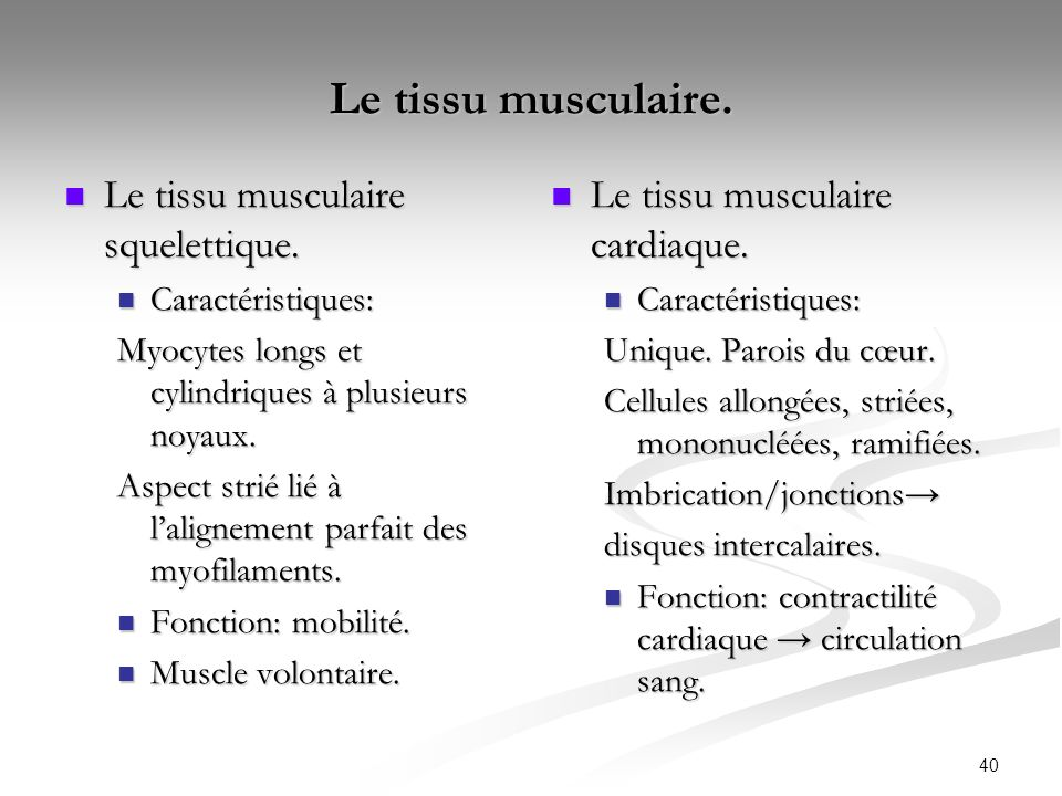 Le tissu musculaire. Le tissu musculaire squelettique.