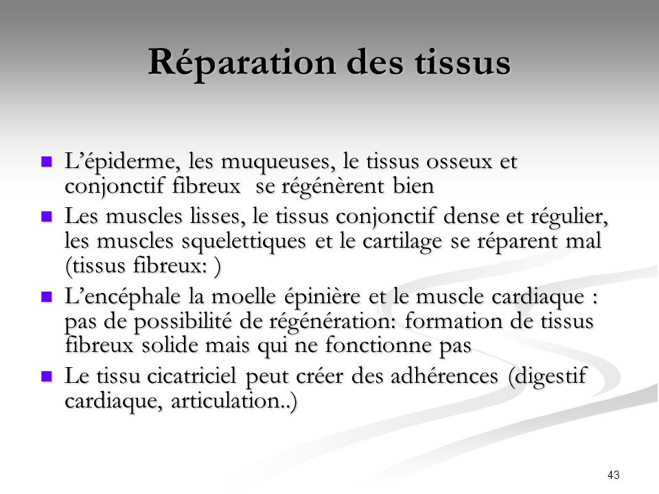Réparation des tissusL'épiderme, les muqueuses, le tissus osseux et conjonctif fibreux se régénèrent bien.