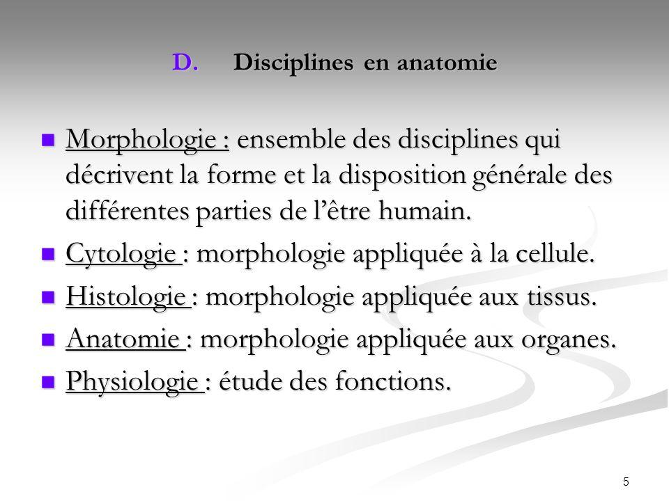 Disciplines en anatomie