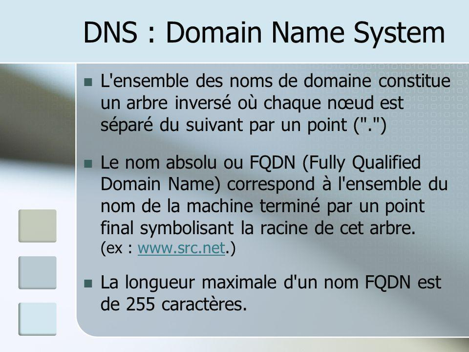 DNS : Domain Name System
