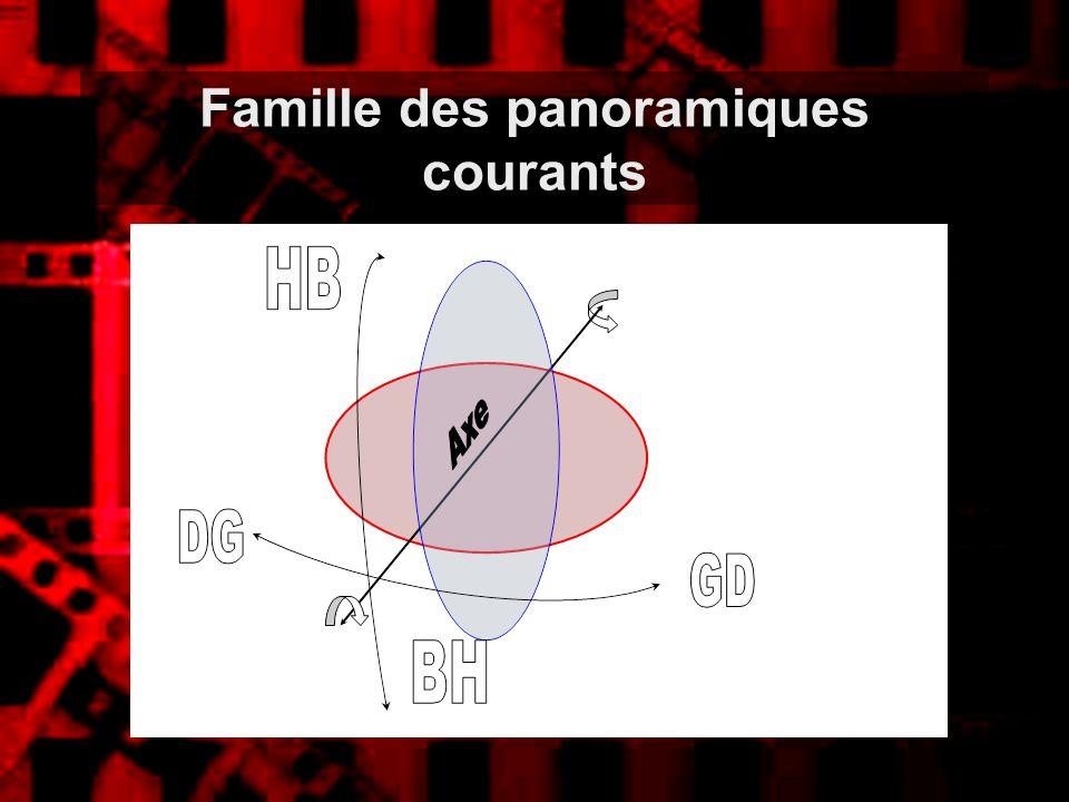 Famille des panoramiques courants