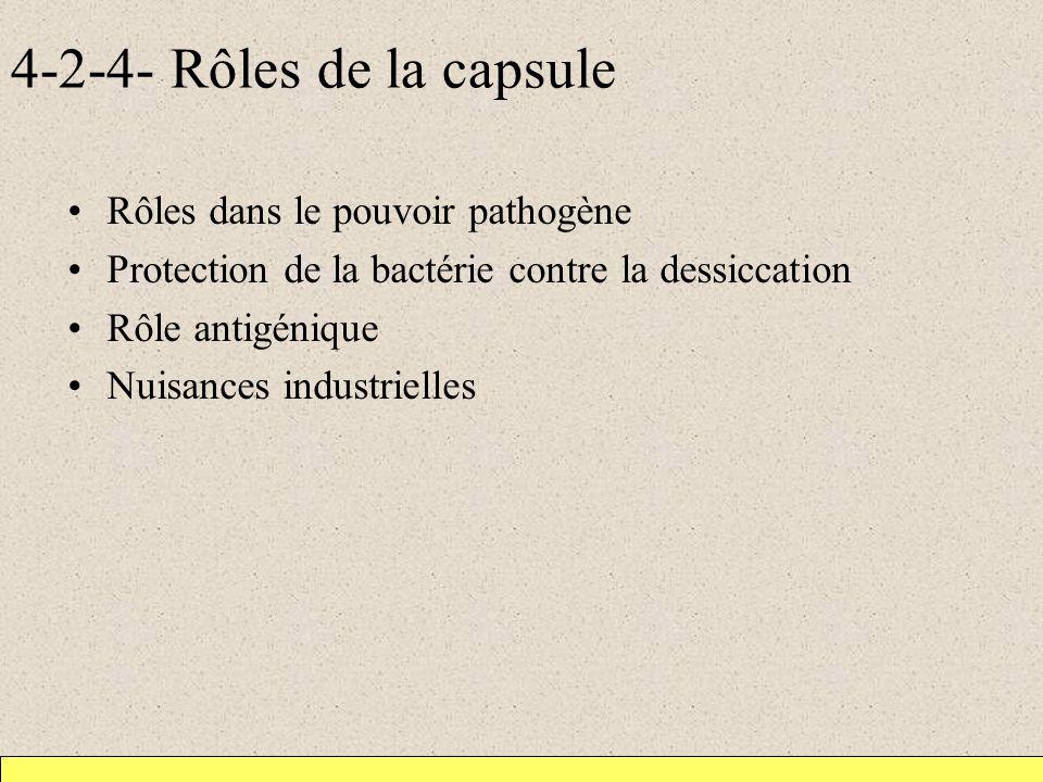4-2-4- Rôles de la capsule Rôles dans le pouvoir pathogène