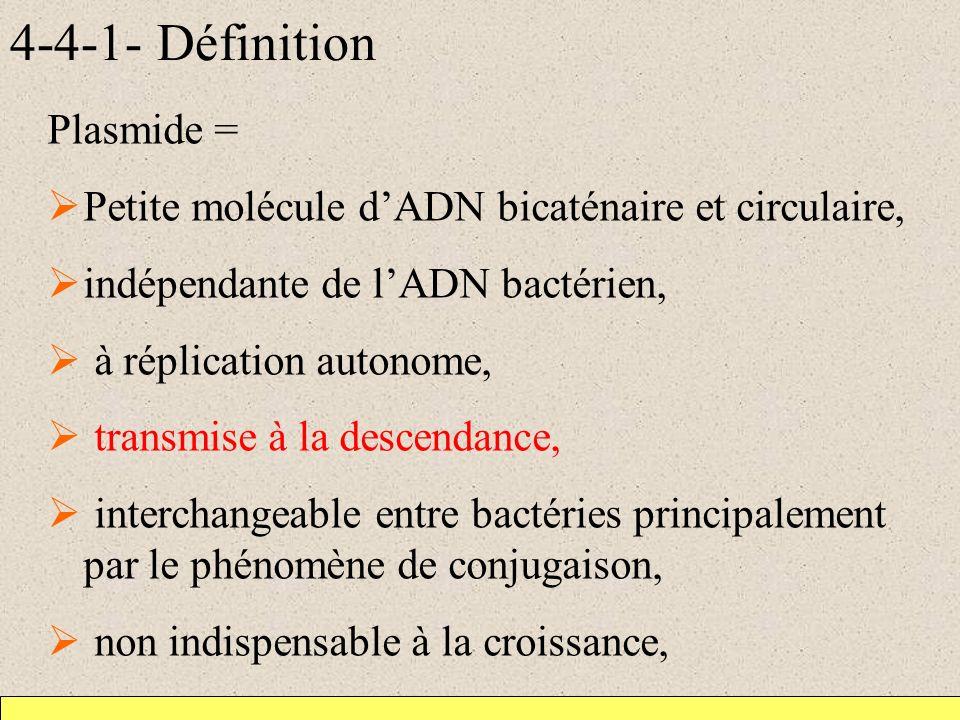 4-4-1- Définition Plasmide =
