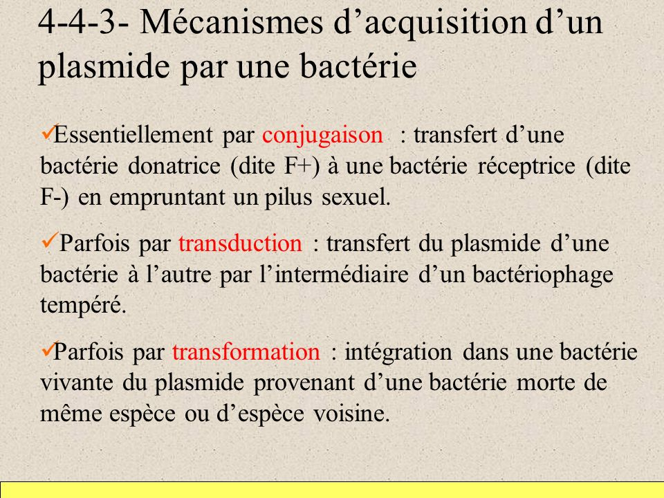 4-4-3- Mécanismes d'acquisition d'un plasmide par une bactérie