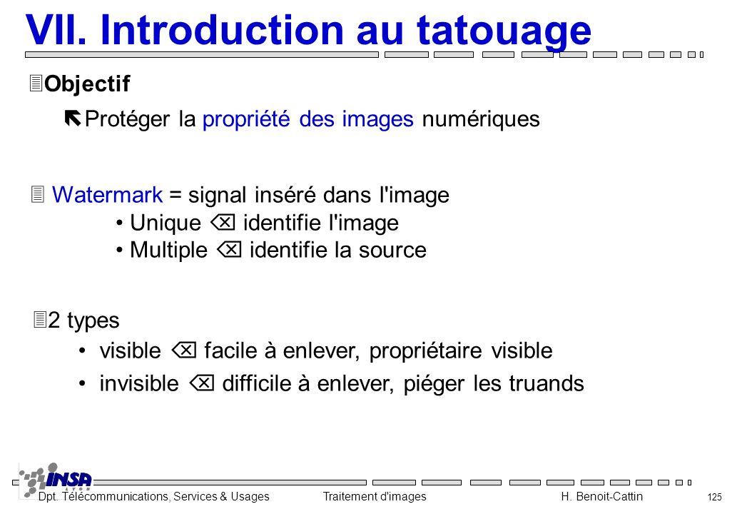 VII. Introduction au tatouage