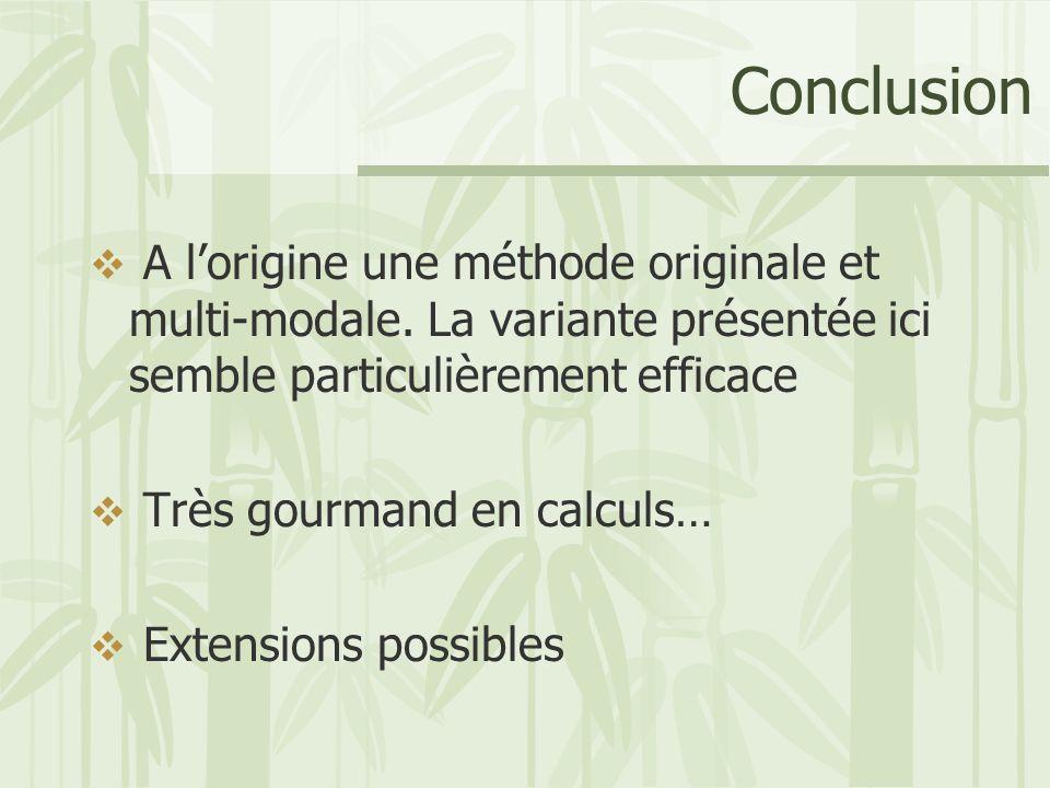 Conclusion A l'origine une méthode originale et multi-modale. La variante présentée ici semble particulièrement efficace.