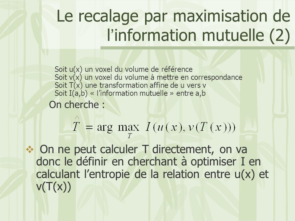 Le recalage par maximisation de l'information mutuelle (2)