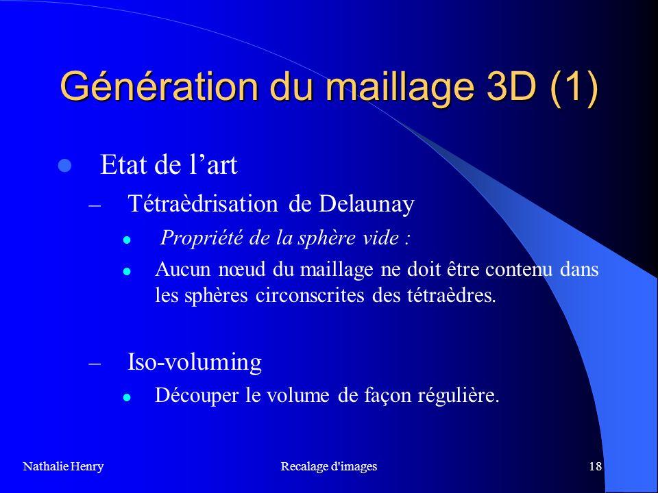 Génération du maillage 3D (1)