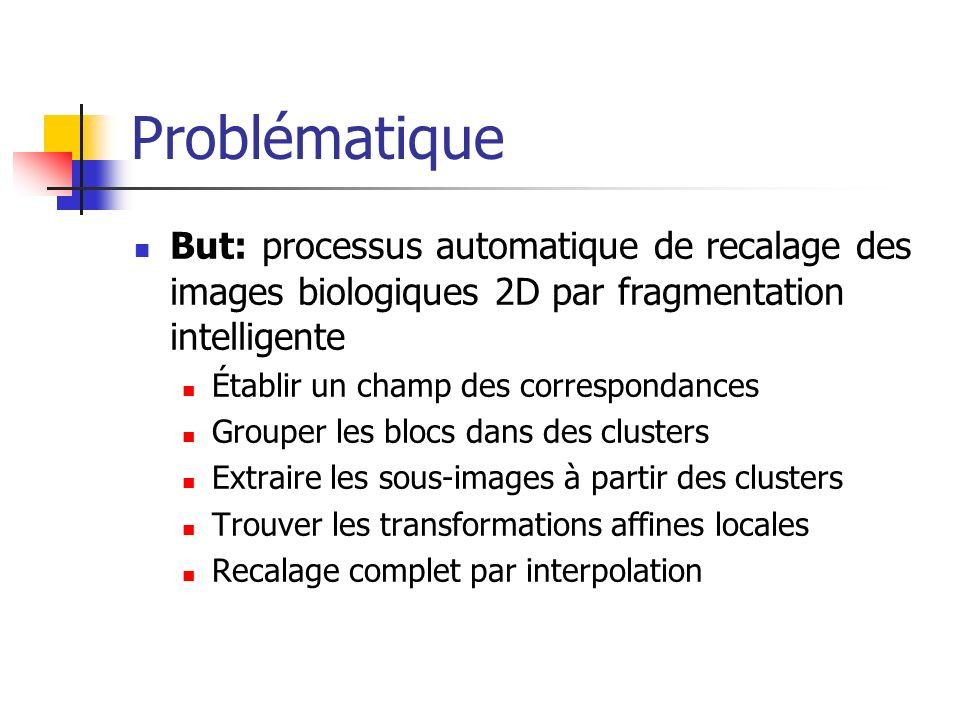 Problématique But: processus automatique de recalage des images biologiques 2D par fragmentation intelligente.