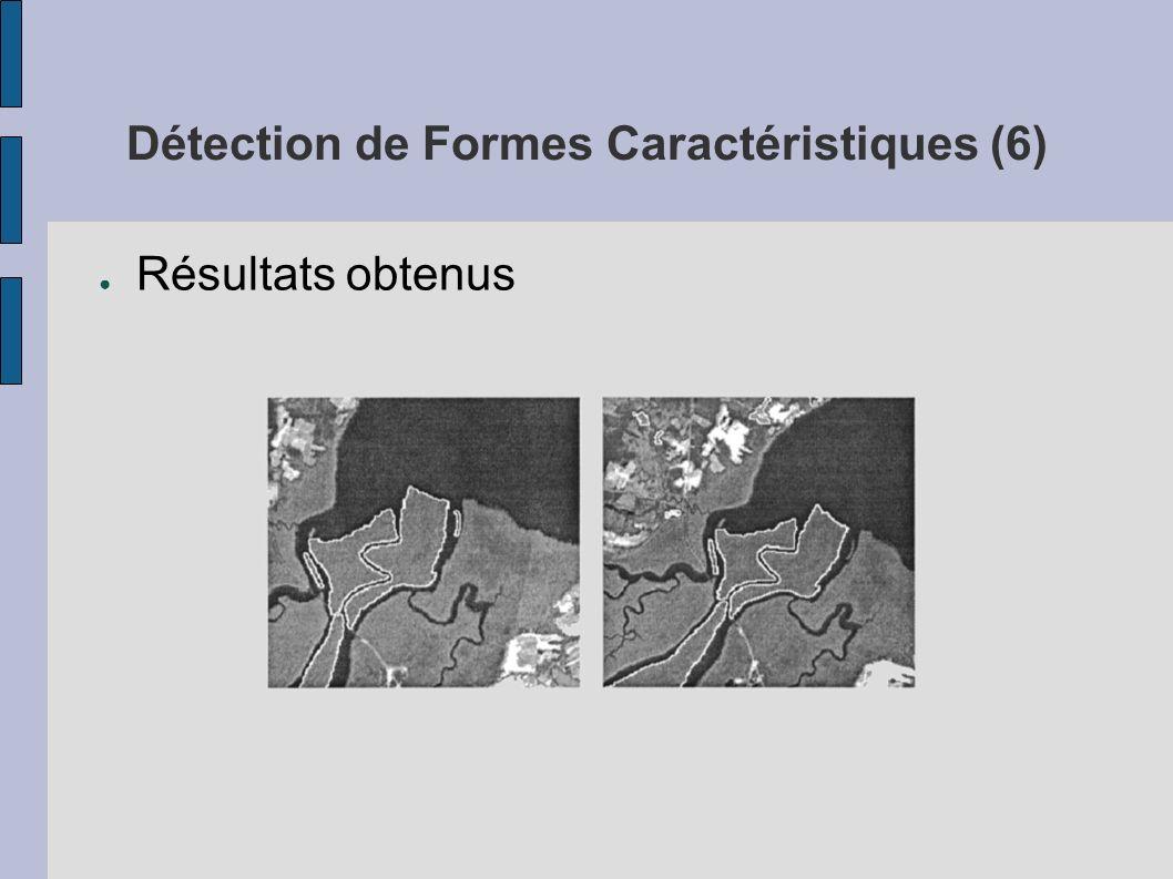 Détection de Formes Caractéristiques (6)