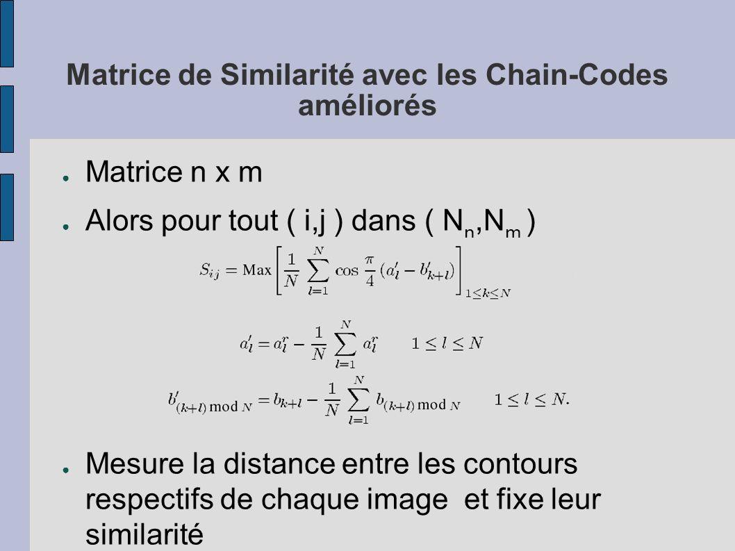 Matrice de Similarité avec les Chain-Codes améliorés