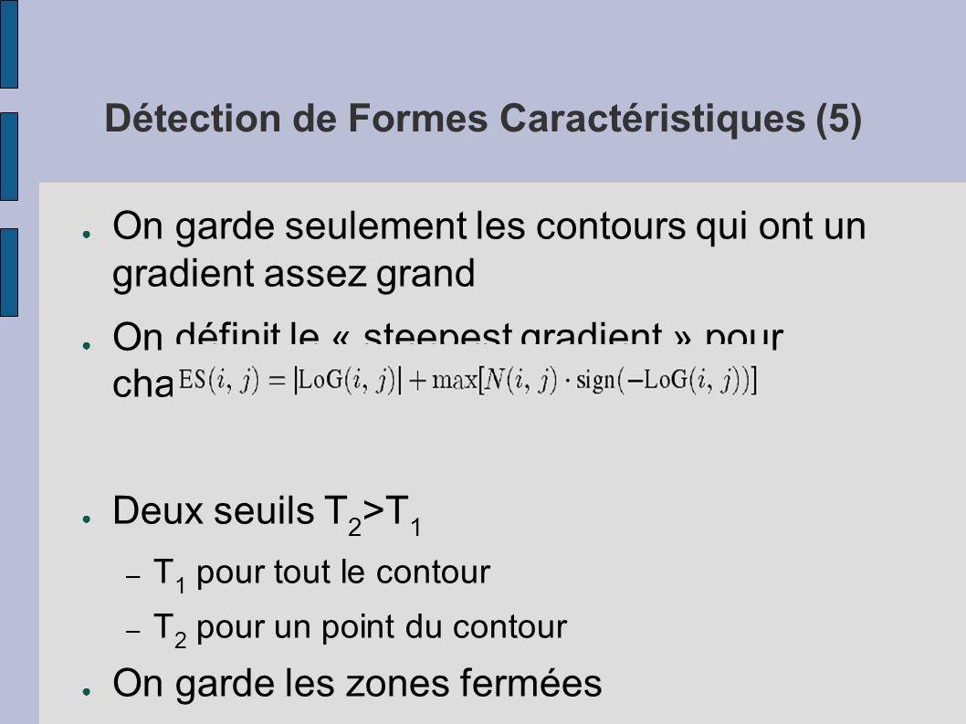 Détection de Formes Caractéristiques (5)