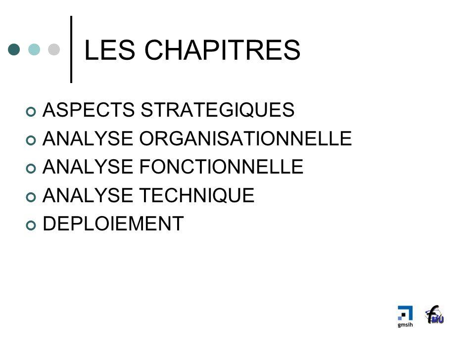 LES CHAPITRES ASPECTS STRATEGIQUES ANALYSE ORGANISATIONNELLE