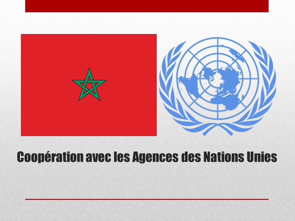 Coopération avec les Agences des Nations Unies