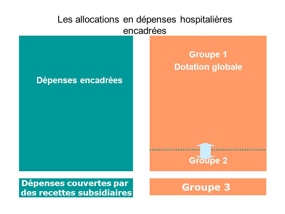 Dépenses couvertes par des recettes subsidiaires