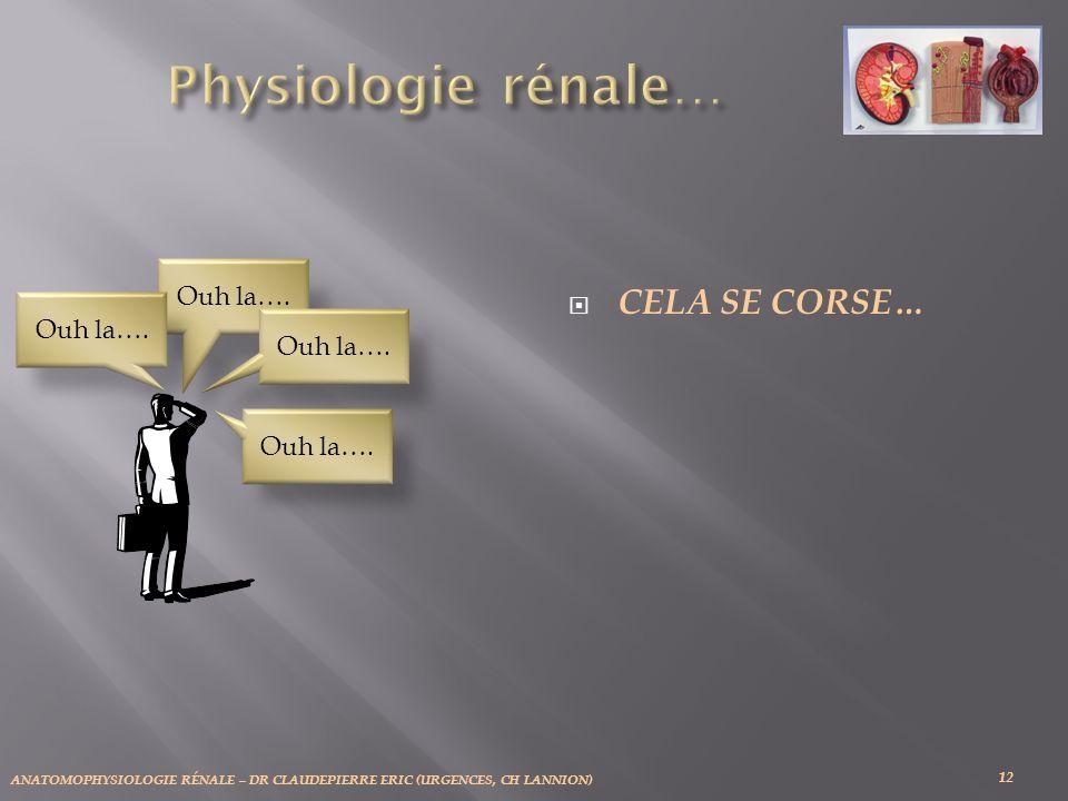 Physiologie rénale… Cela se corse… Ouh la…. Ouh la…. Ouh la…. Ouh la….